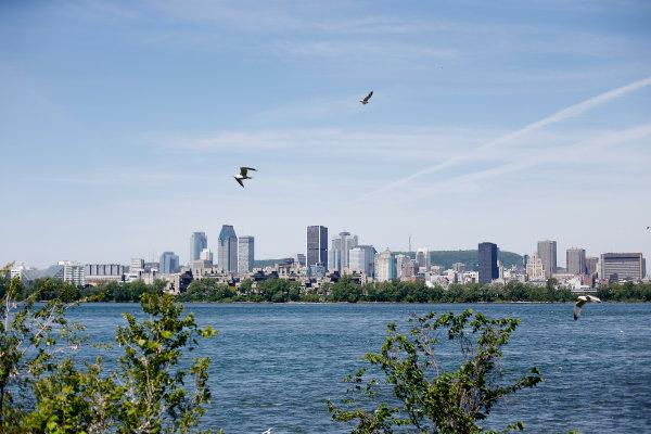 Circuit Gilles Villeneuve, Montreal, Canada. Thursday 4 June 2015. The Montreal skyline. World Copyright: Steven Tee/LAT Photographic. ref: Digital Image _X0W3865