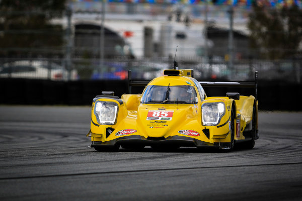 5-8 January, 2017, Daytona Beach, Florida USA 85, ORECA, P, Misha Goikhberg, Chris Miller, Stephen Simpson, Mathias Beche ©2017, Barry Cantrell LAT Photo USA