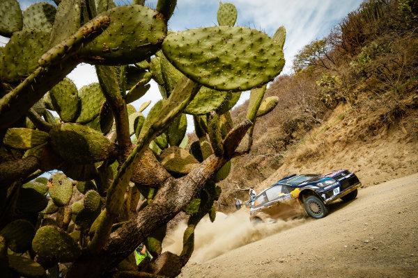 2016 FIA World Rally Championship, Round 03, Rally Mexico, March 3-6, 2016 Andreas Mikkelsen, VW, action Worldwide Copyright: McKlein/LAT