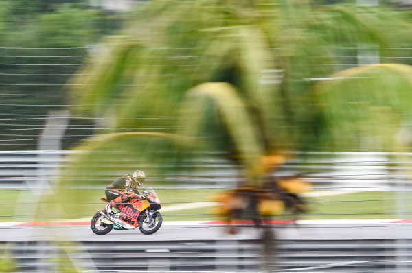 2017 Moto3 Championship - Round 17 Sepang, Malaysia. Friday 27 October 2017 Bo Bendsneyder, Red Bull KTM Ajo World Copyright: Gold and Goose / LAT Images ref: Digital Image 25051