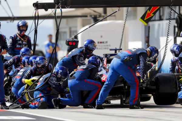 Daniil Kvyat, Toro Rosso STR14, makes a stop