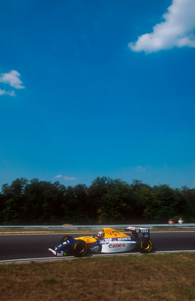 1993 Hungarian Grand Prix.Hungaroring, Budapest, Hungary.13-15 August 1993.Damon Hill (Williams FW15C Renault) 1st position for his maiden Grand Prix win.Ref-93 HUN 06.World Copyright - LAT Photographic