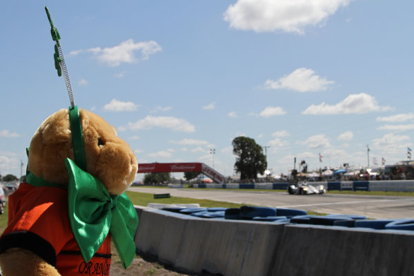 Sebring, Florida, USA. 15th-17th March 2012,St Patricks Day fans at SebringWorld Copyright: Ebrey/LAT Photographic.