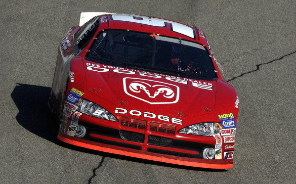 Race winner Bill Elliott (USA), Dodge Dealers. 