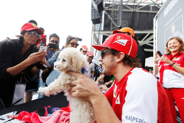 Circuit of the Americas, Austin, Texas, United States of America. Saturday 16th November 2013.  Fernando Alonso, Ferrari, with a dog. World Copyright: Charles Coates/LAT Photographic. ref: Digital Image _N7T9689