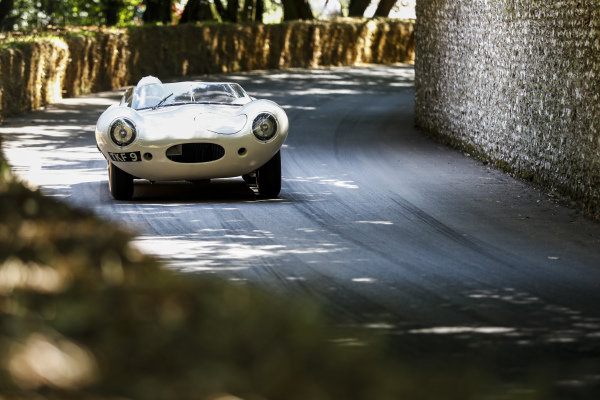 Gary Pearson, Jaguar D-Type