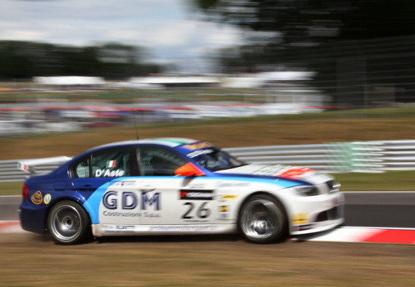 Brands Hatch, UK. 17-18th July 2010. Stefano D'Aste, BMW 320si, runs wide onto the grass. Action. World Copyright: Kevin Wood/LAT Photographic Ref: Digital Image IMG_4174a